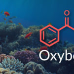 Is Oxybenzone Contributing to the Death of Coral Reefs?
